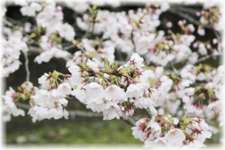 「『春風』変ホ長調 ヴァイオリン、ヴィオラとピアノのための hiromichi作曲」と新座の写真